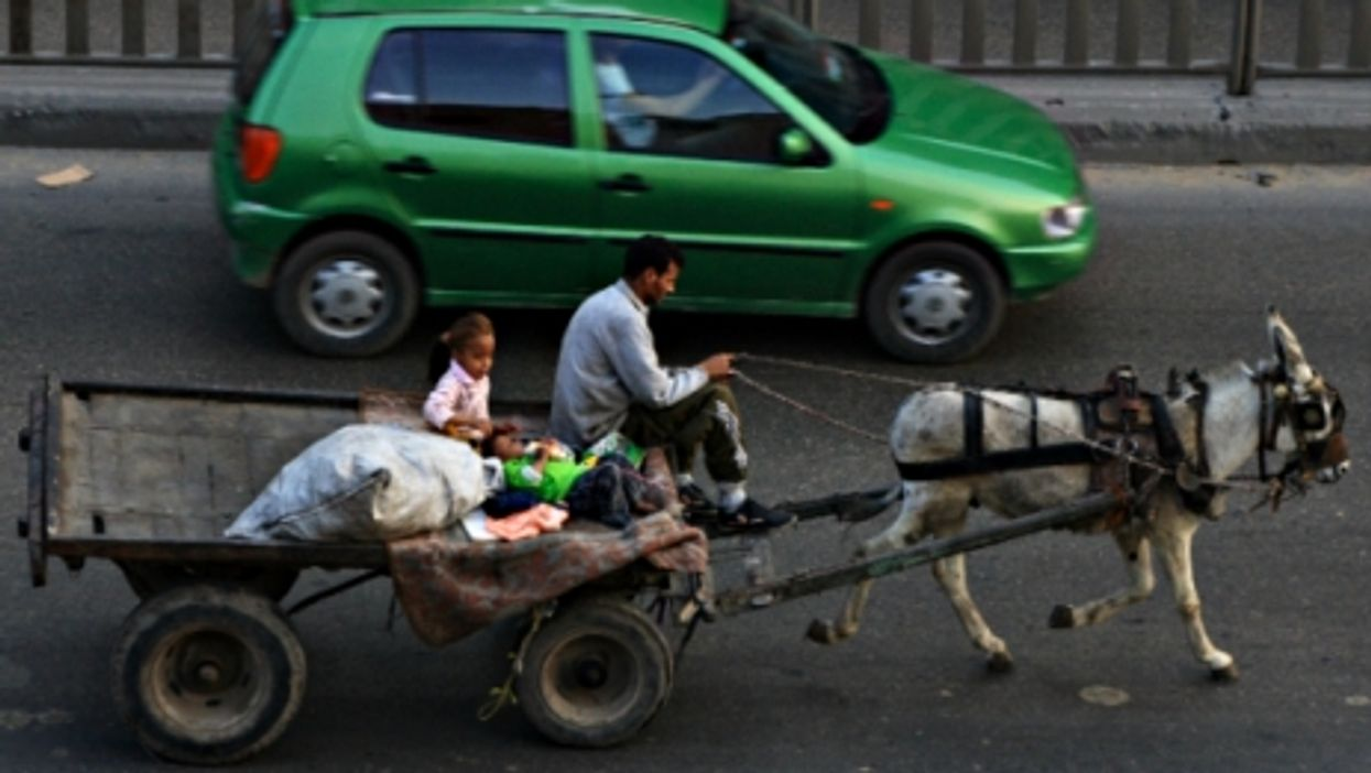 A donkey cart in Cairo