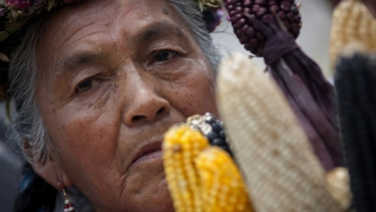 A Mexican woman during a protest day against the transgenic company Monsanto