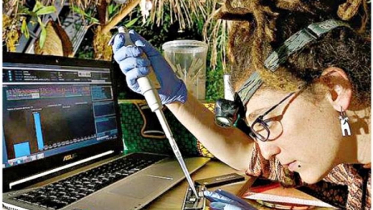 A researcher using the DNA Field Lab