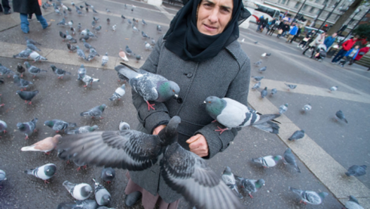 A Romanian woman feeding pigeons at Marble Arch in London.