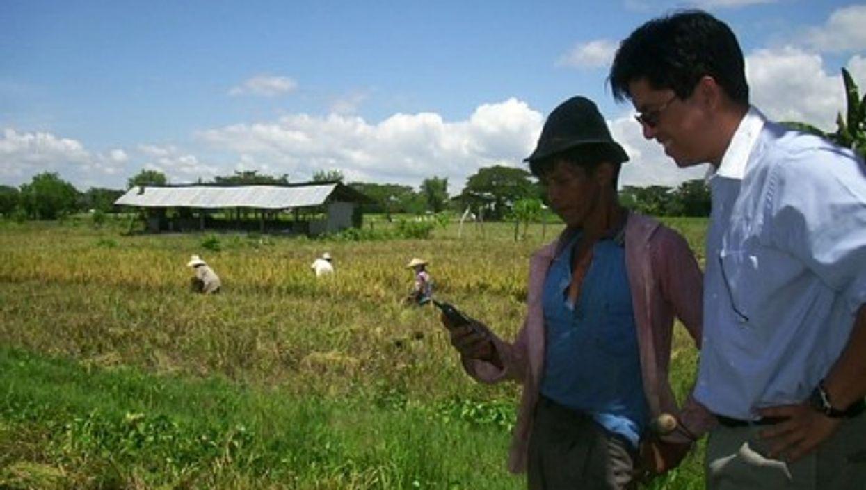A rural farmer in the Philippines (kiwanja)