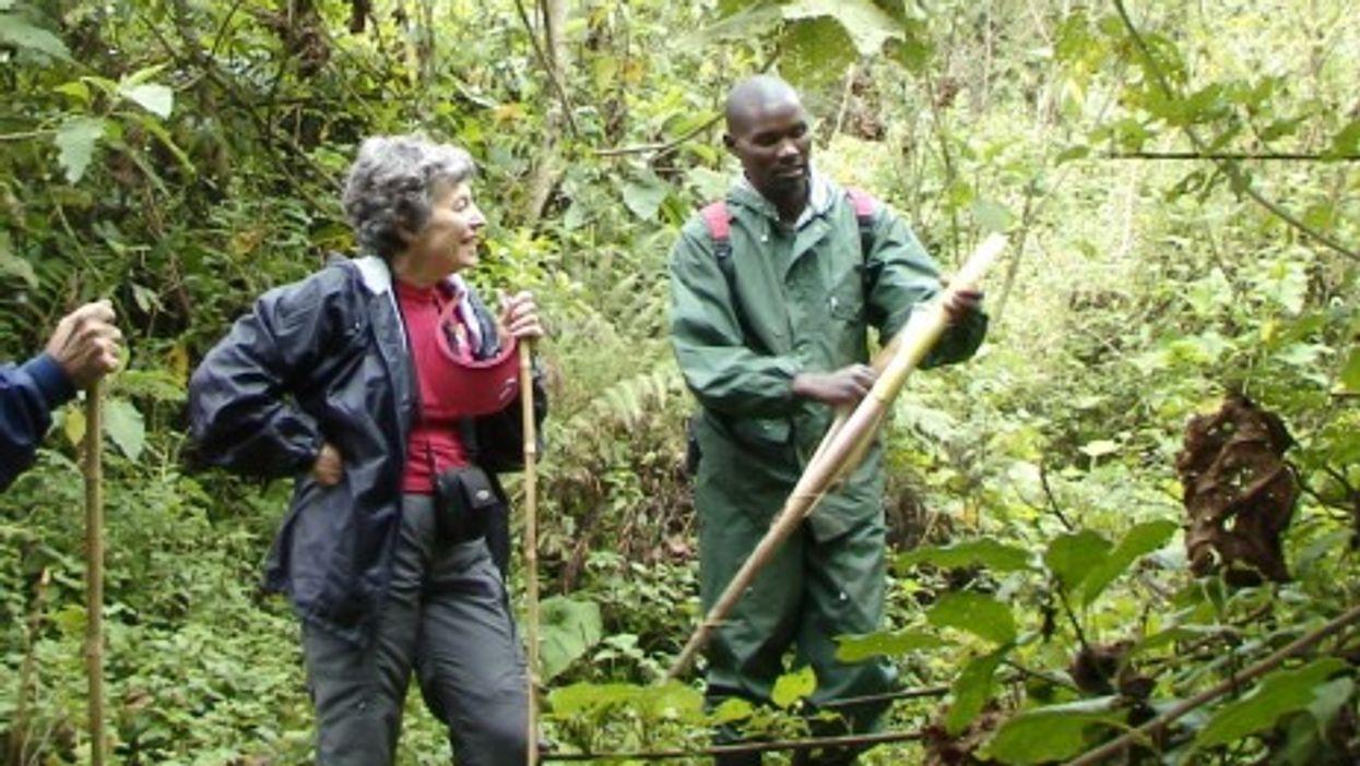 A Rwandan guide at the Volcanoes National Park.