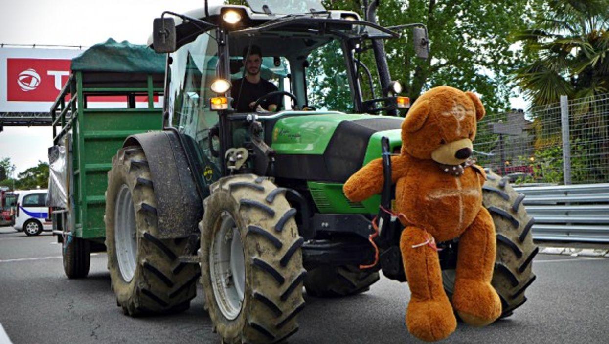 Anti-bear demonstration in Pau