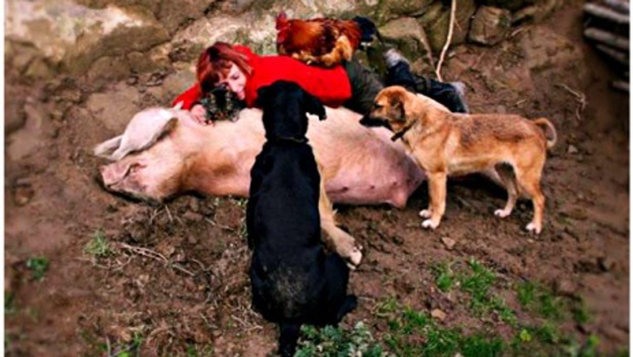 "Antonella Inicorbaf, surrounded by ValleVegan ""non-humans"""