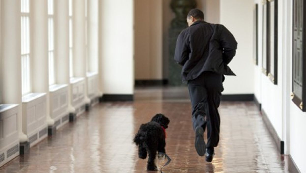 Barack Obama and his presidential pup,