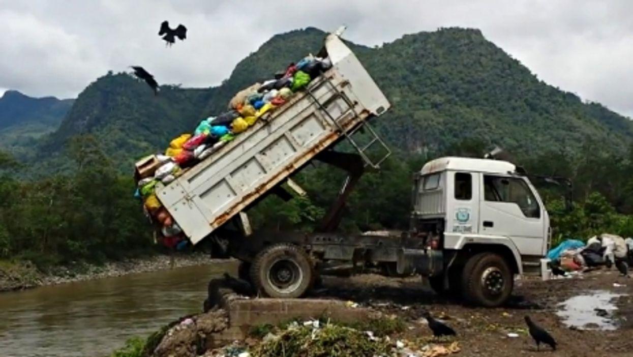Birds flying a truck dumping waste in Tingo Maria, Peru