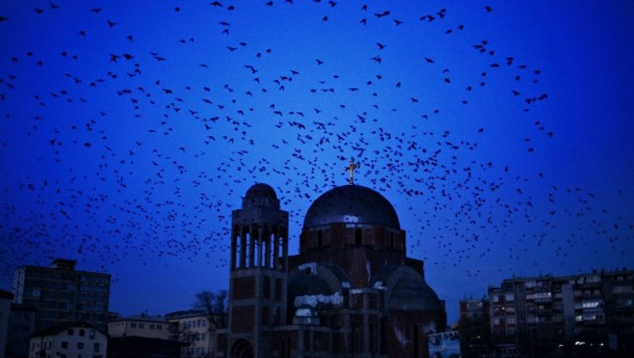Birds flying by an abandoned Orthodox church in Pristina, Kosovo