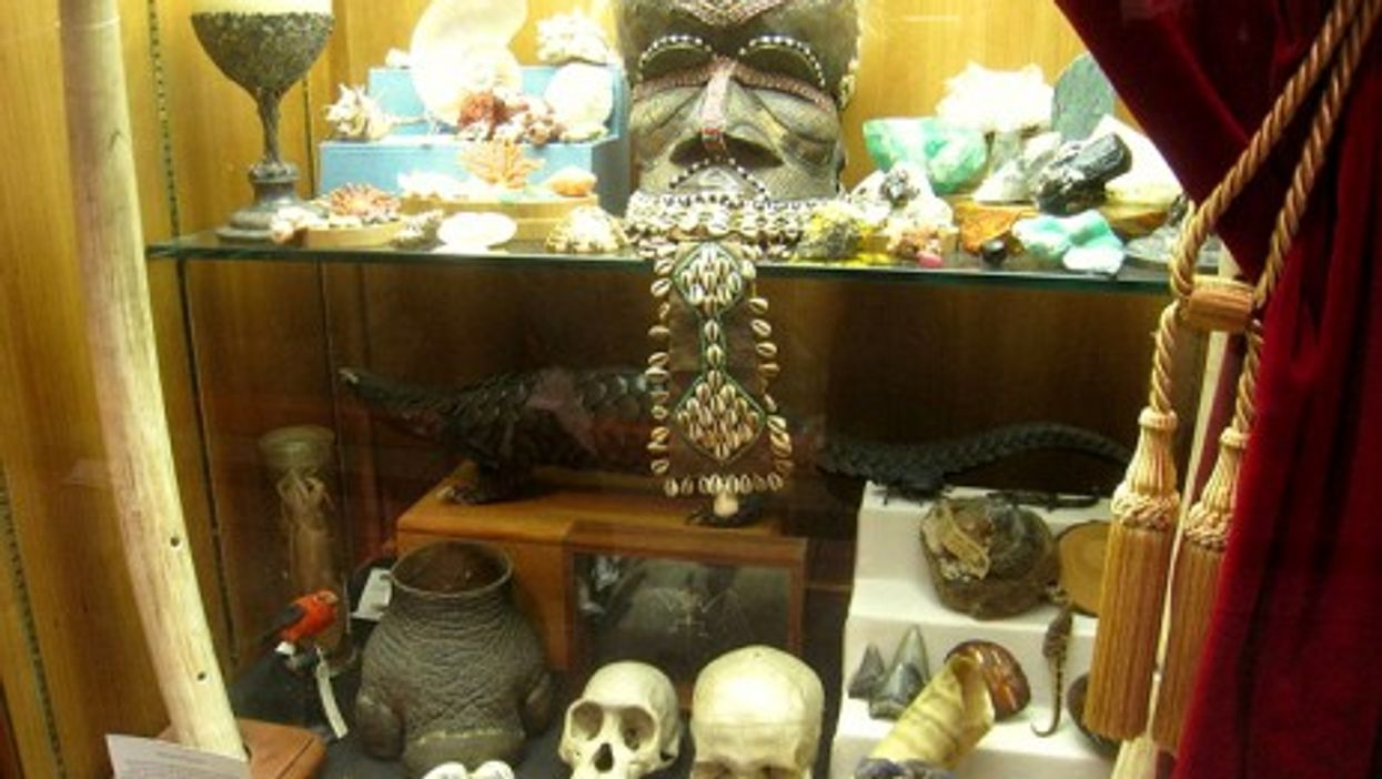 Cabinets of curiosities have existed since the 16th century (Daderot)