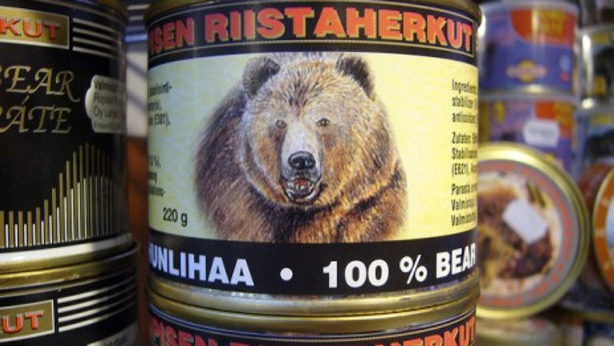 Canned bear meat from Finland (Harry Brignull)