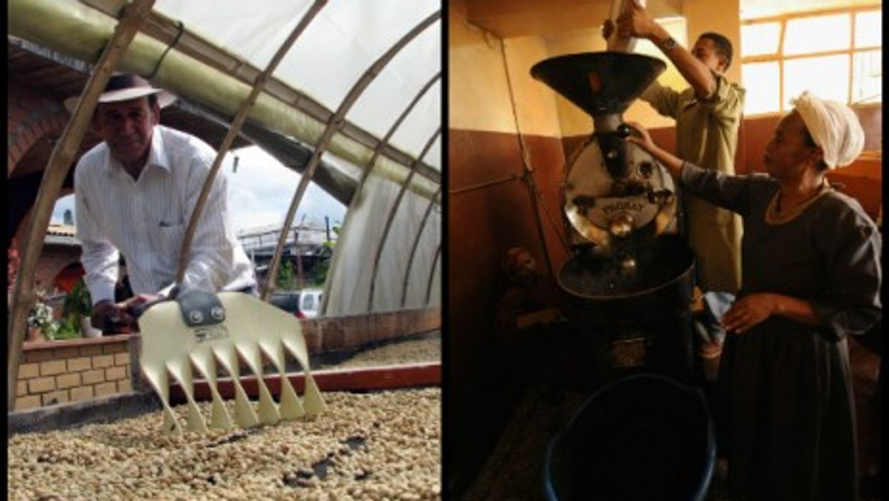 Coffee growers in Manizales, Colombia (left), and in Addis Ababa, Ethiopia (right)