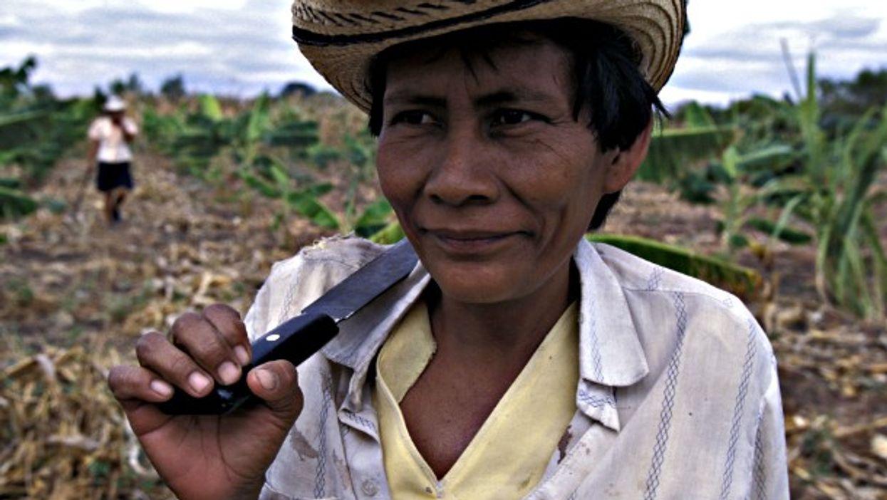 Colombian farmers in a field