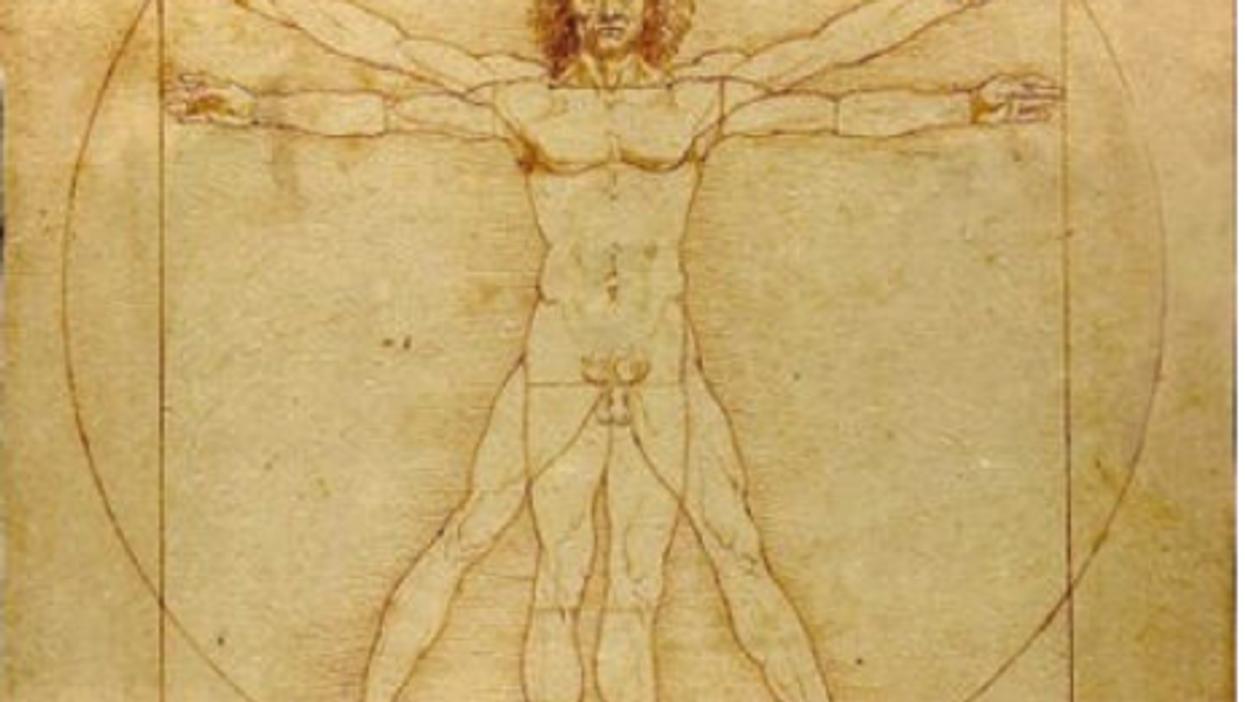 Da Vinci's Vetruvian Man is housed in Venice's Gallerie dell'Accademia
