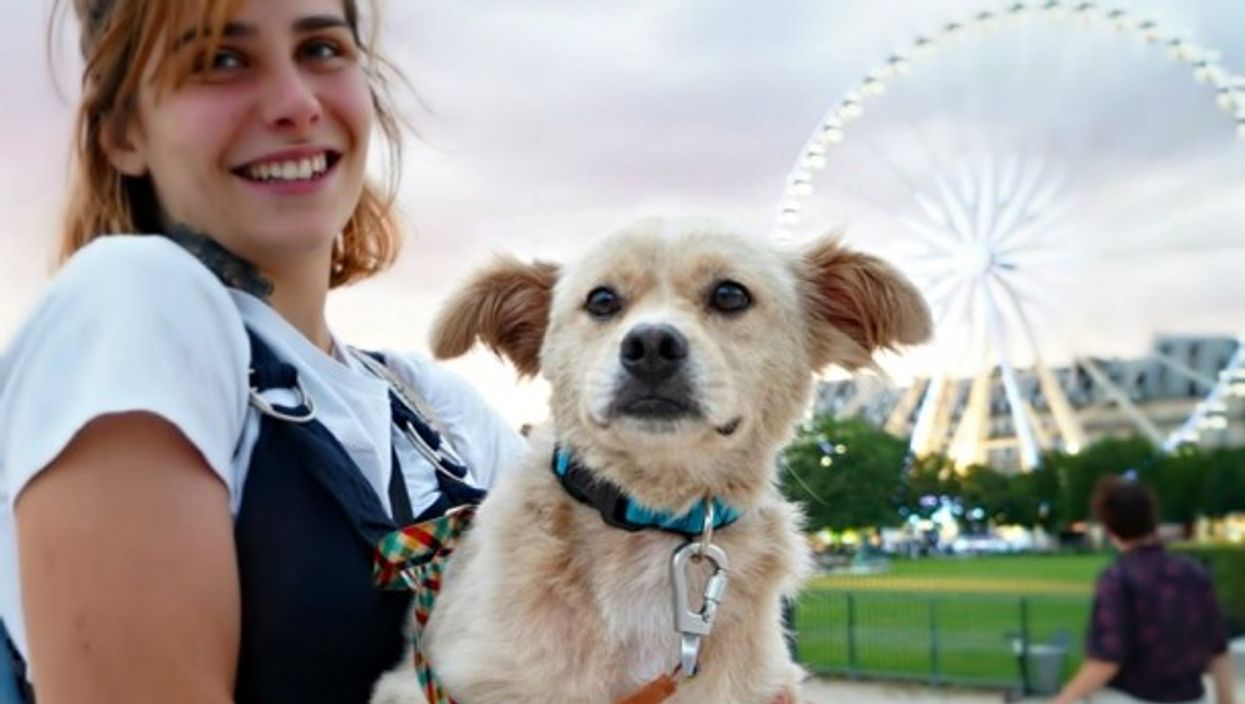 Dog rescued from Yulin, now in Paris