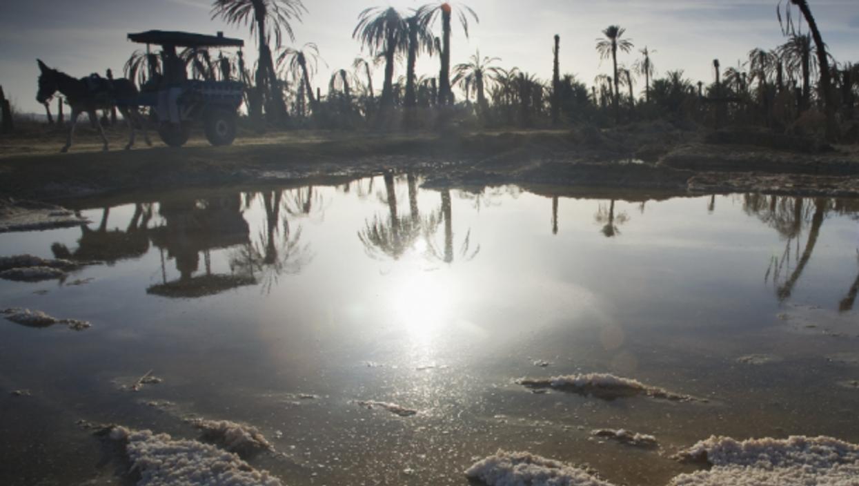 Drought in Siwa, rural Egypt