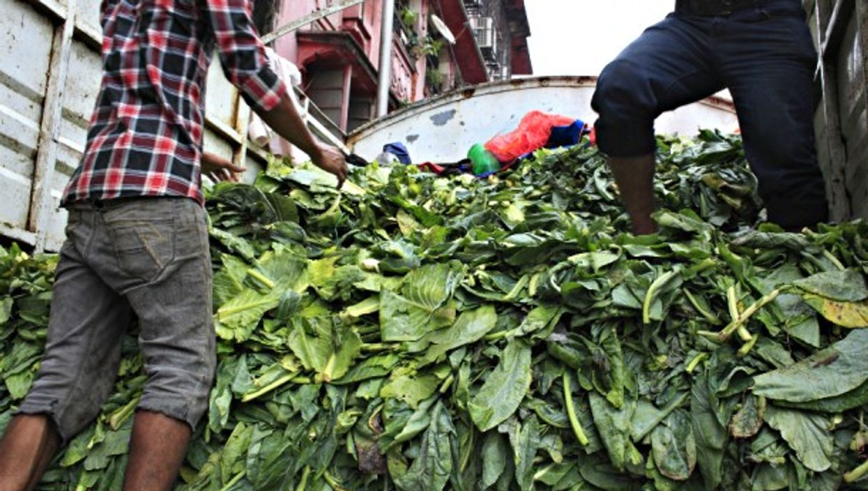 Dumping discarded vegetables in Mumbai, India