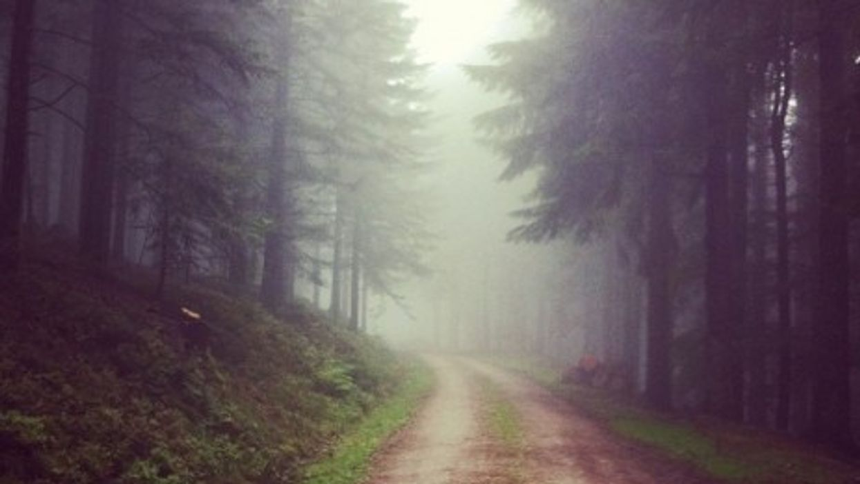 Exploring the Black Forest in southwestern Germany