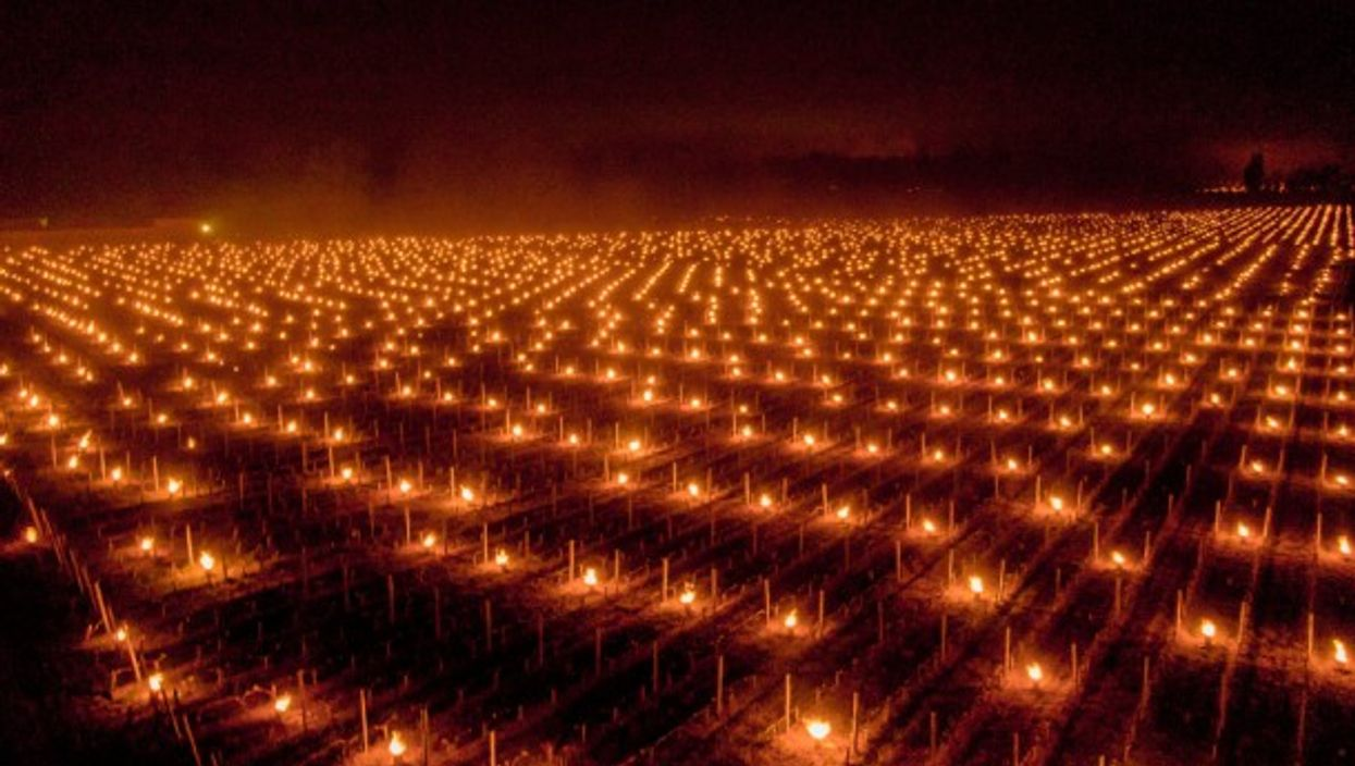 Farmers in France heat up their vineyards to protect them from the frost