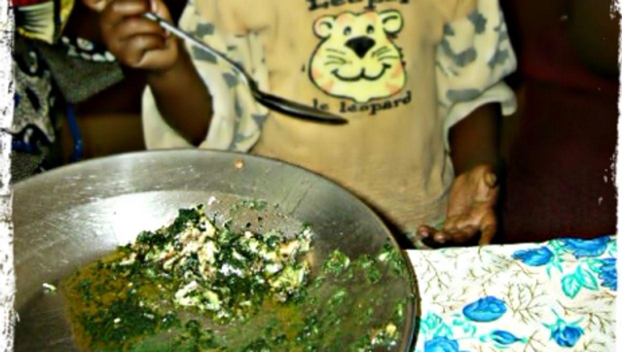 Feeding spirulina to the children of Bangui