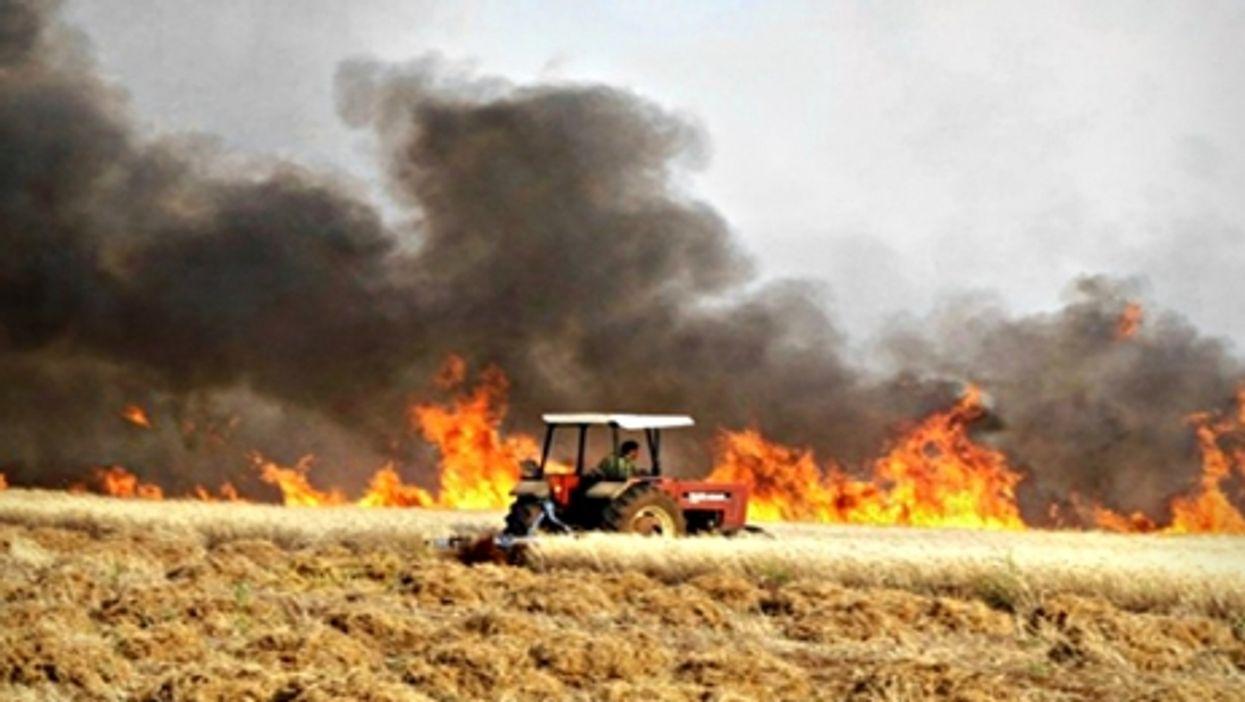 Field burning in Syria