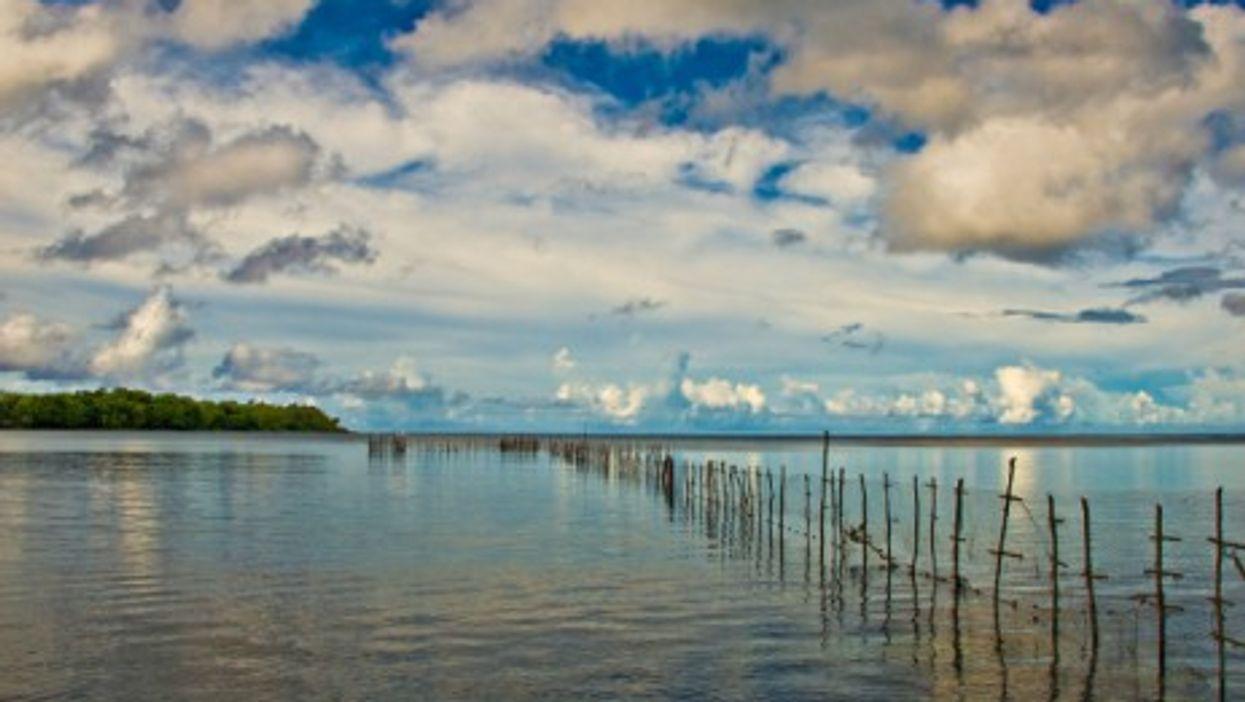 Fish traps in Efate, Vanuatu