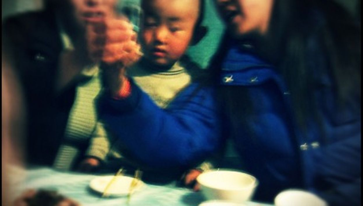 Food security was a major reason for China's one-child policy