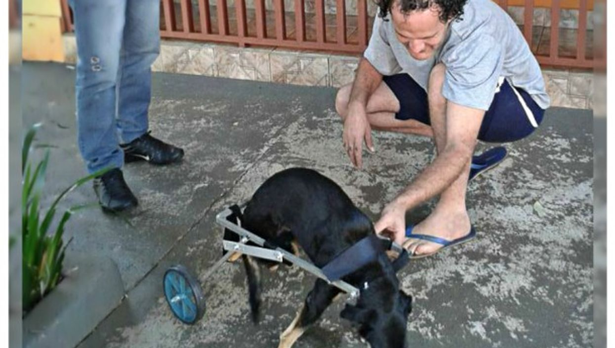 Glauber Pereira Souza and one of the dog he took care of