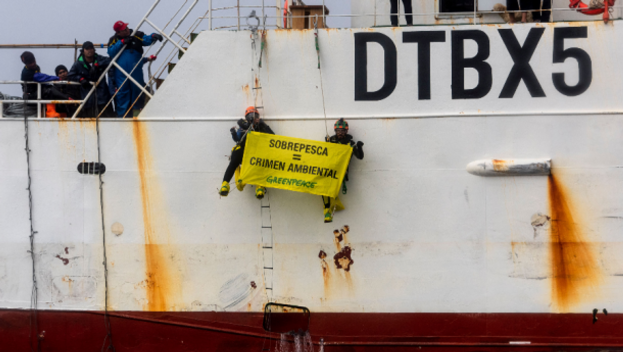 Greenpeace activists protesting in Argentina's 'Agujero Azul' biodiversity hotspot