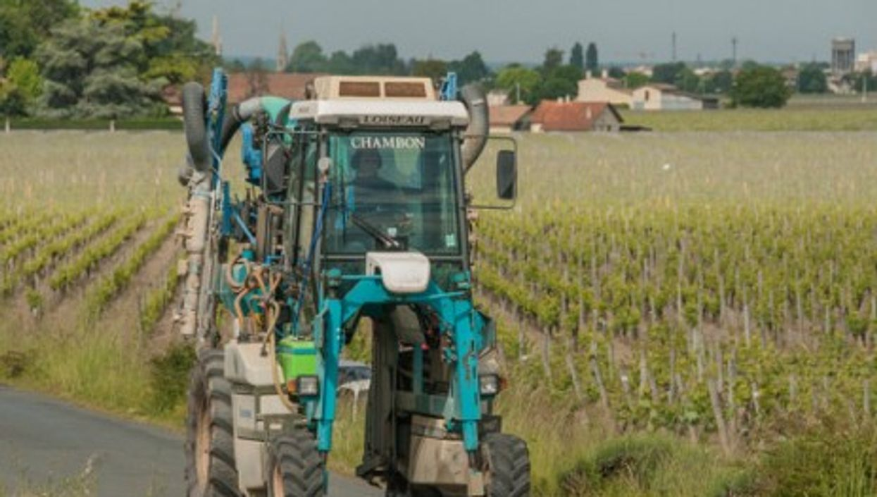 Harvesting grapes is big business in Gironde