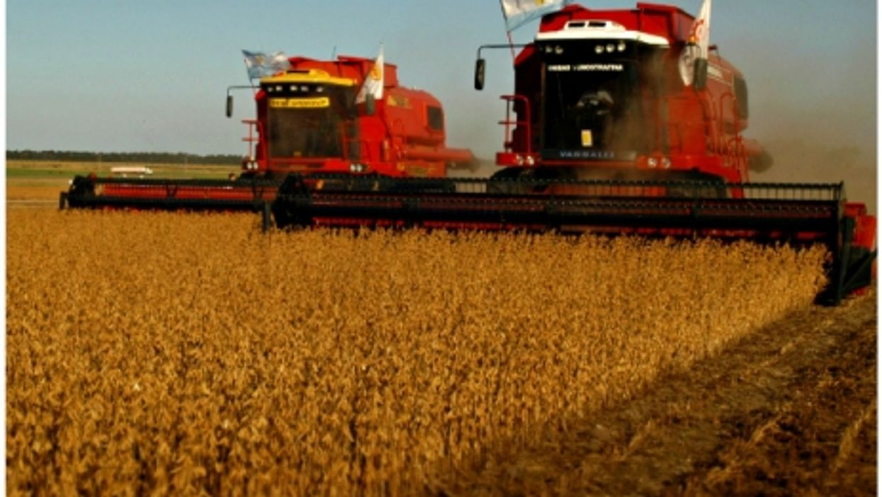 Harvesting soybeans north of Buenos Aires, Argentina