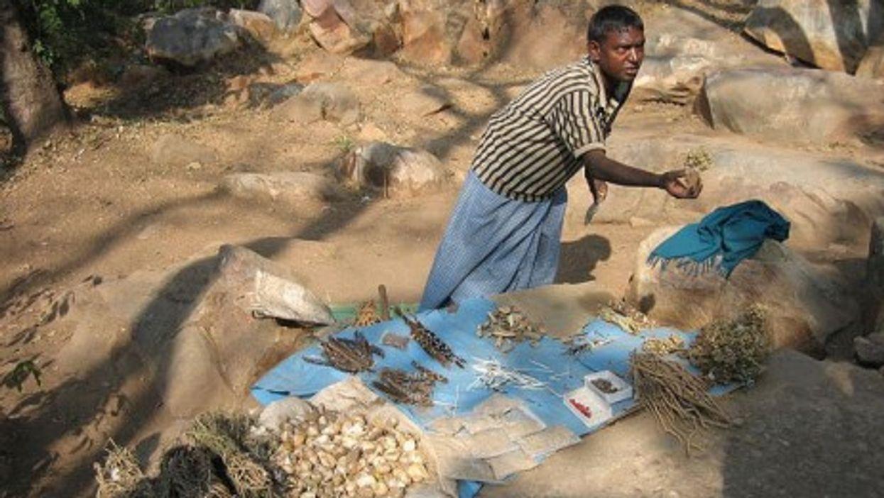Herbal medicine vendor