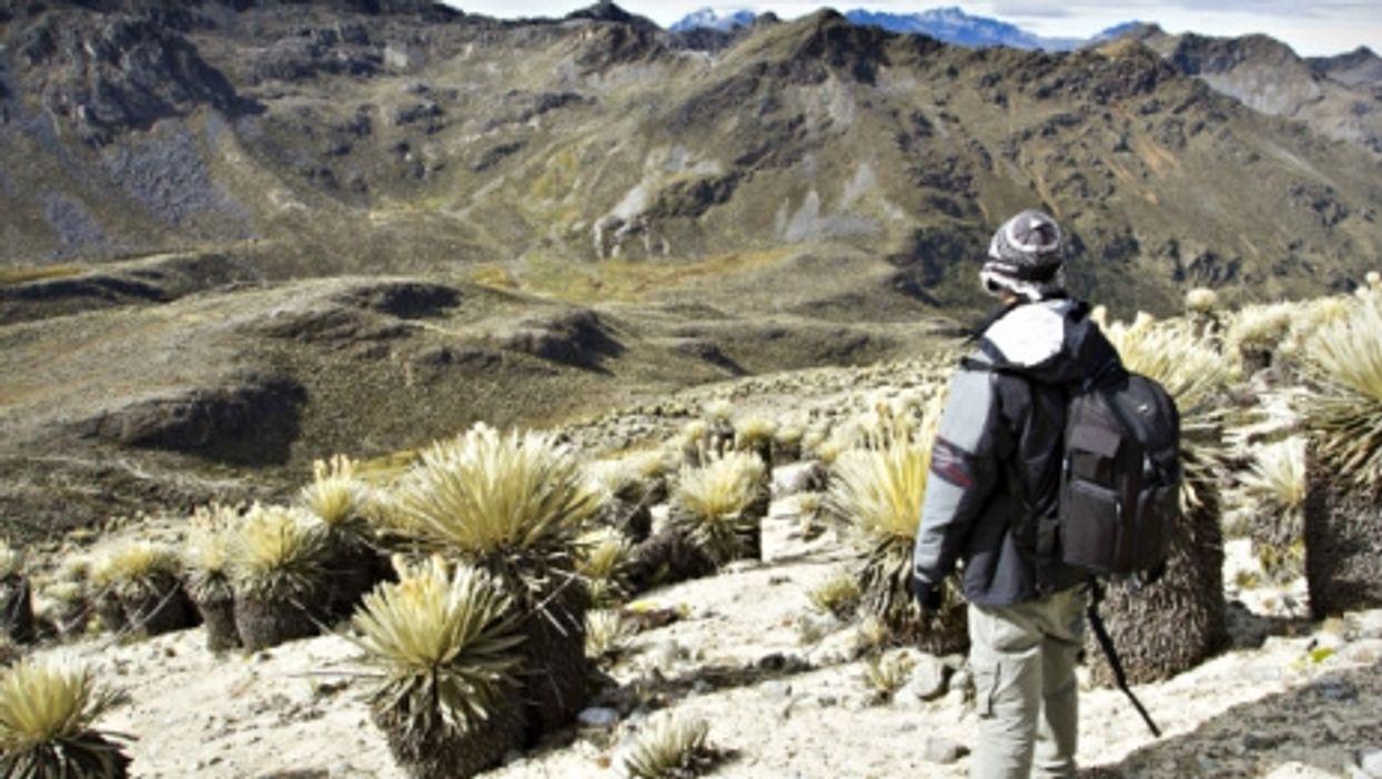 High season in Venezuela's Sierra de la Culata national park