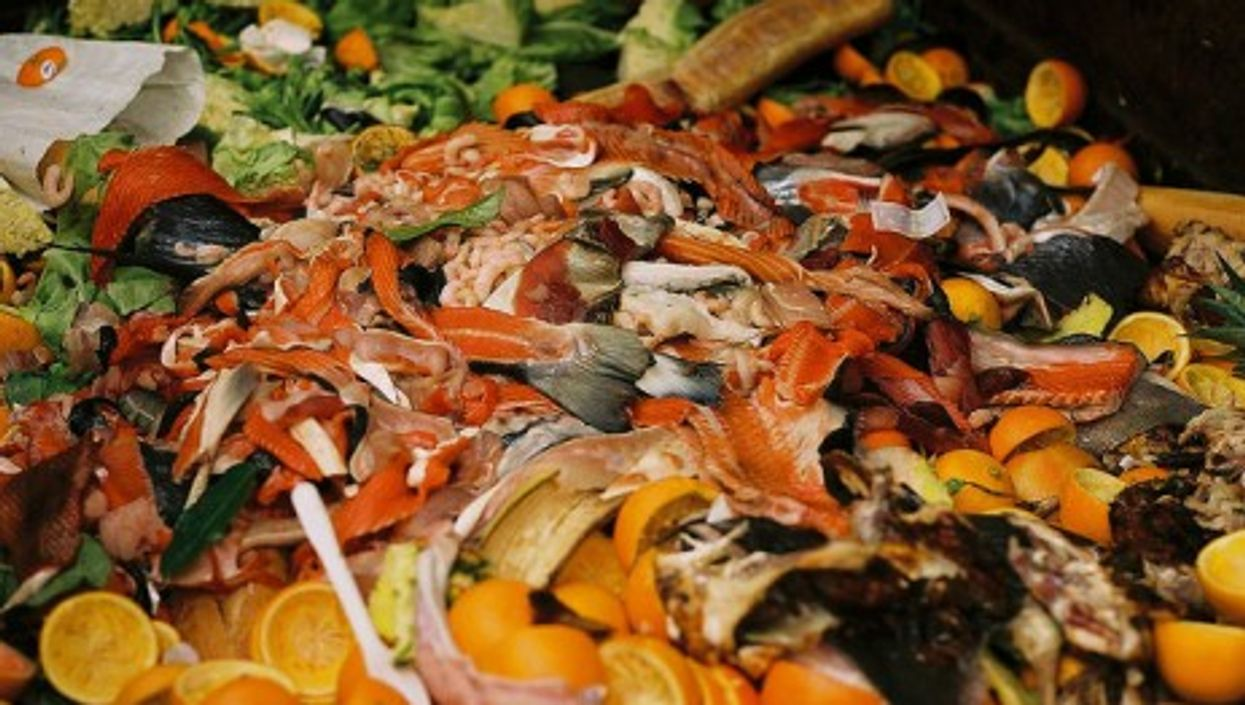 What A Waste: Uneaten Food A Global (And French Gourmand) Problem
