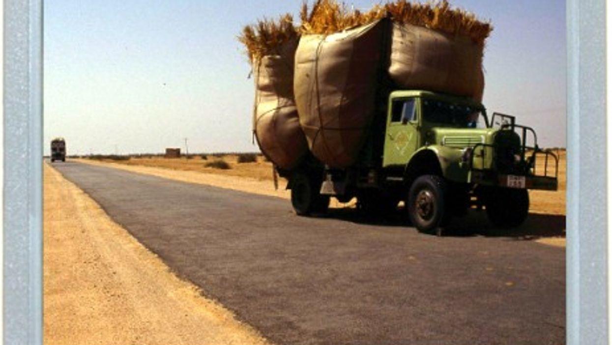 Rajasthan Road Rage