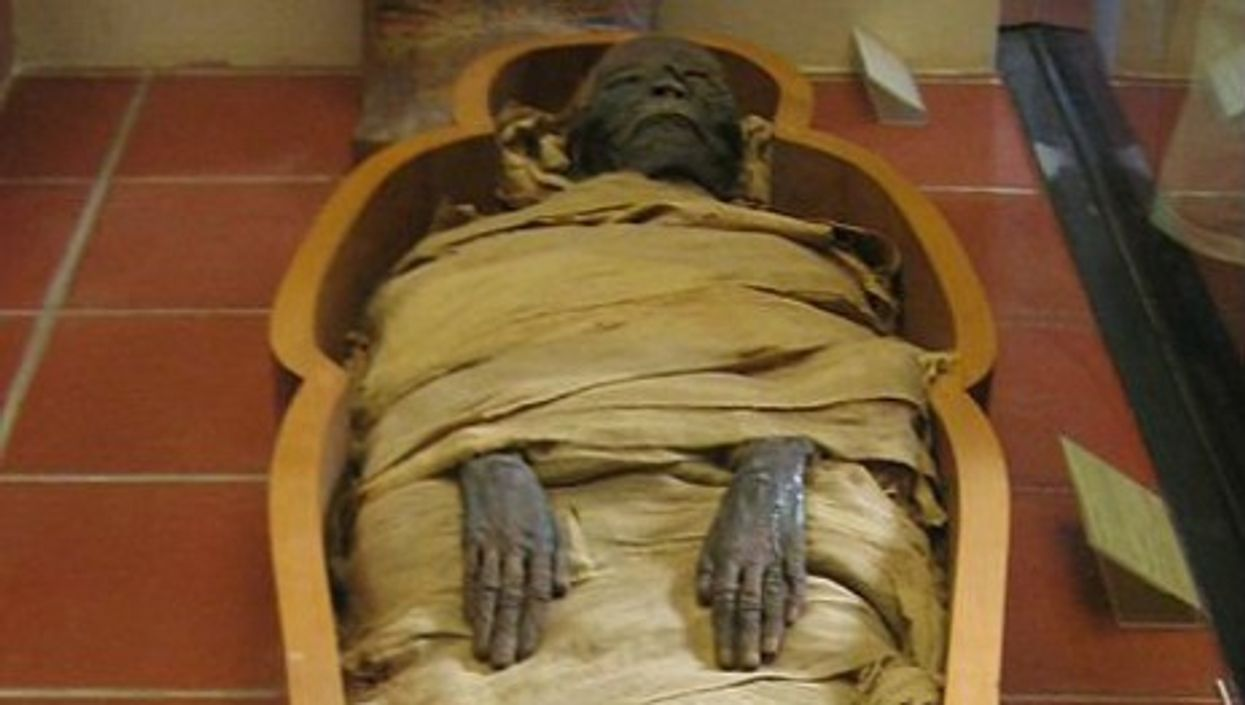 Ancient Mummies Discovered Floating In Egyptian Canal