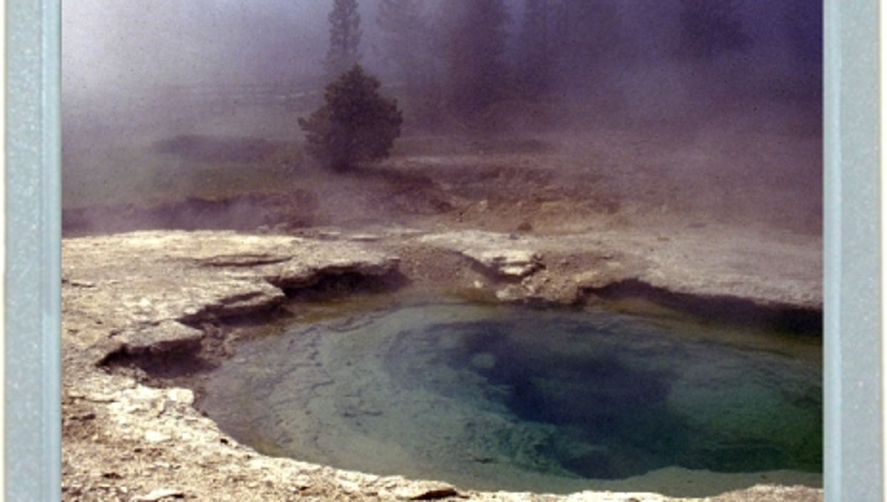 Oops In Yellowstone