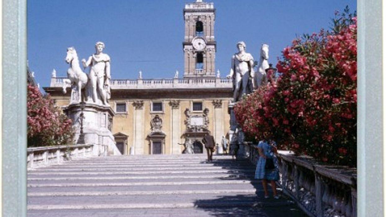 Capitoline Shade