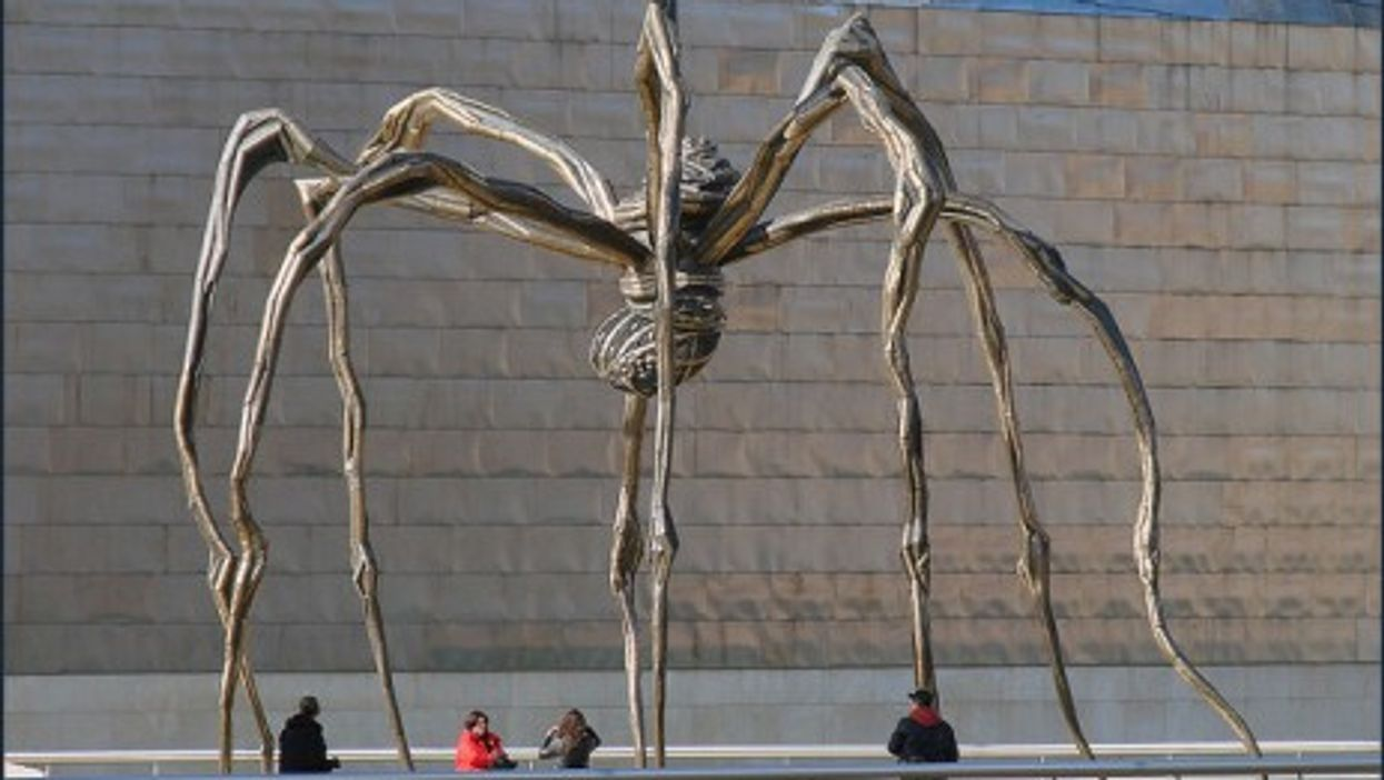 A Giant Spider Weaves Its Way Around the World