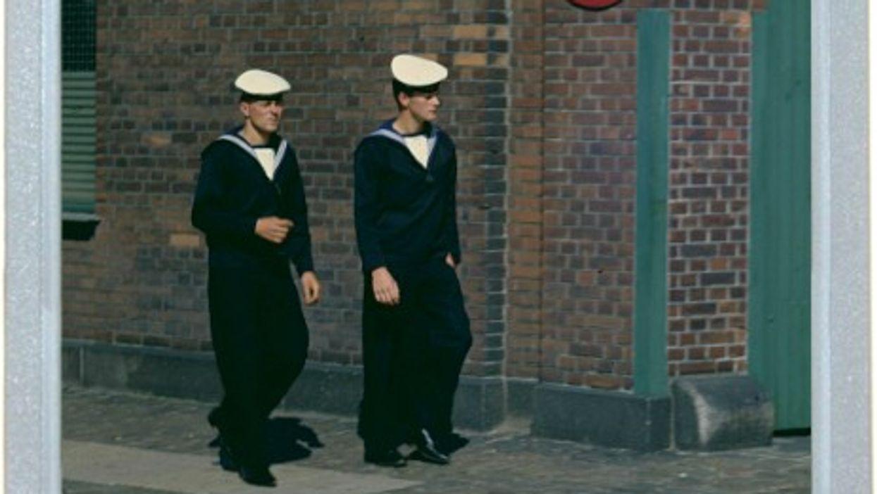 Sailors And Ducks