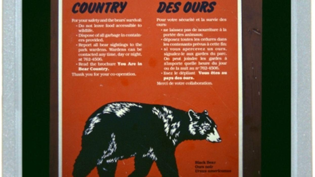 Fair Bear Warning