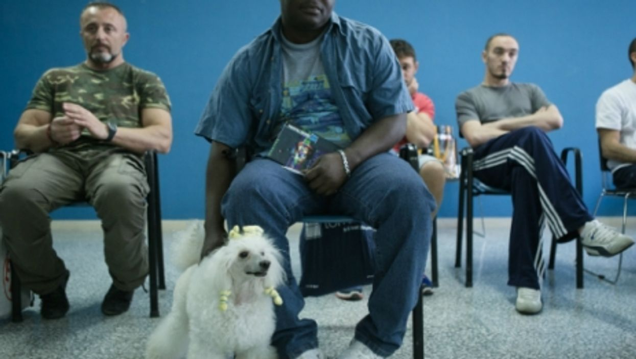 The Italian Prison That Teaches Inmates To Walk Your Dogs