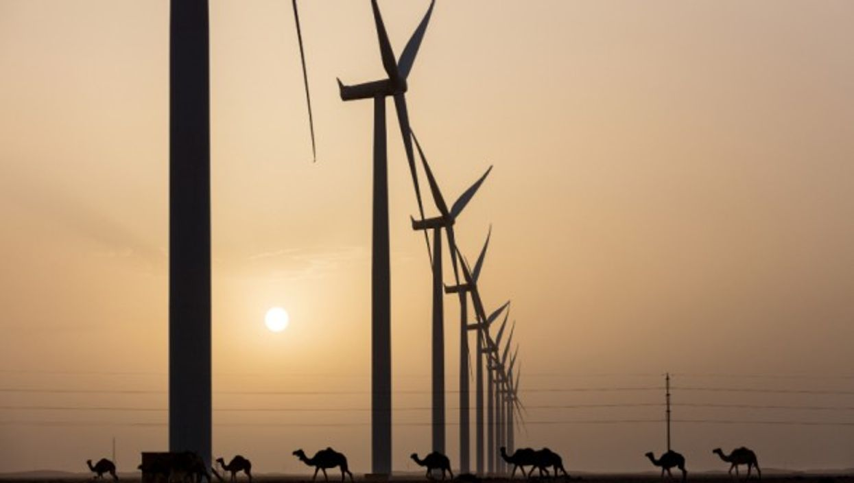 Egypt Should Stop Dragging Its Feet On Renewable Energy