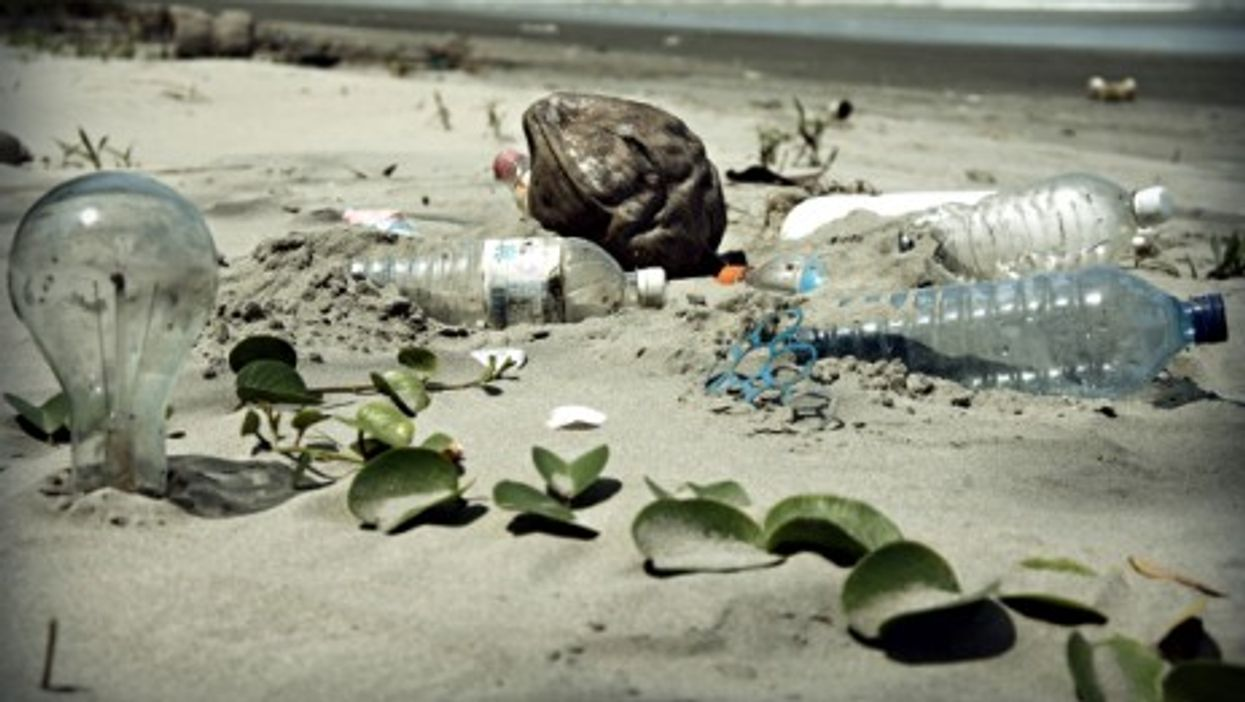 The Trials And Tribulations Of Living Without Plastic