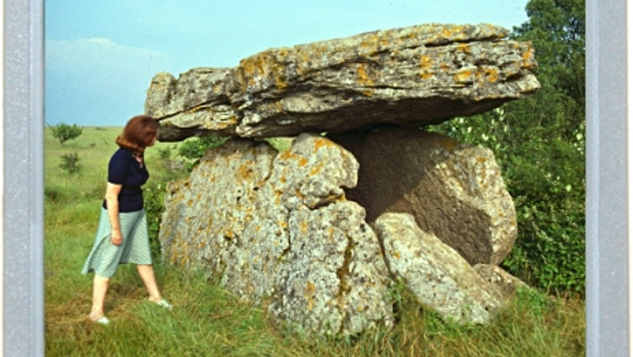 Neolithic Picnic