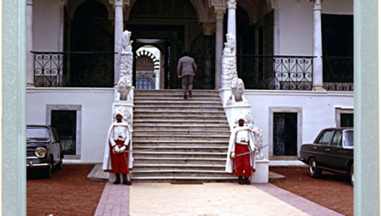 The Lion Guards