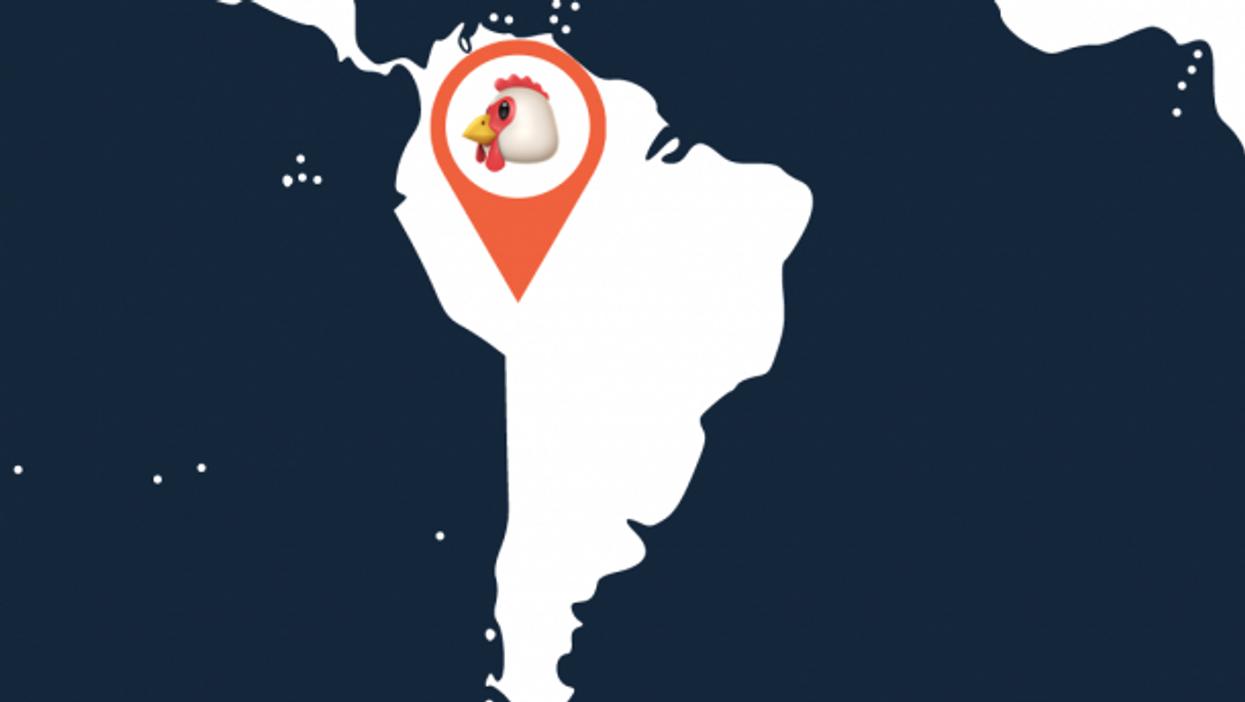 Pollo Vaccine? Chicken Truck Delivers COVID-19 Jabs To Bolivian City