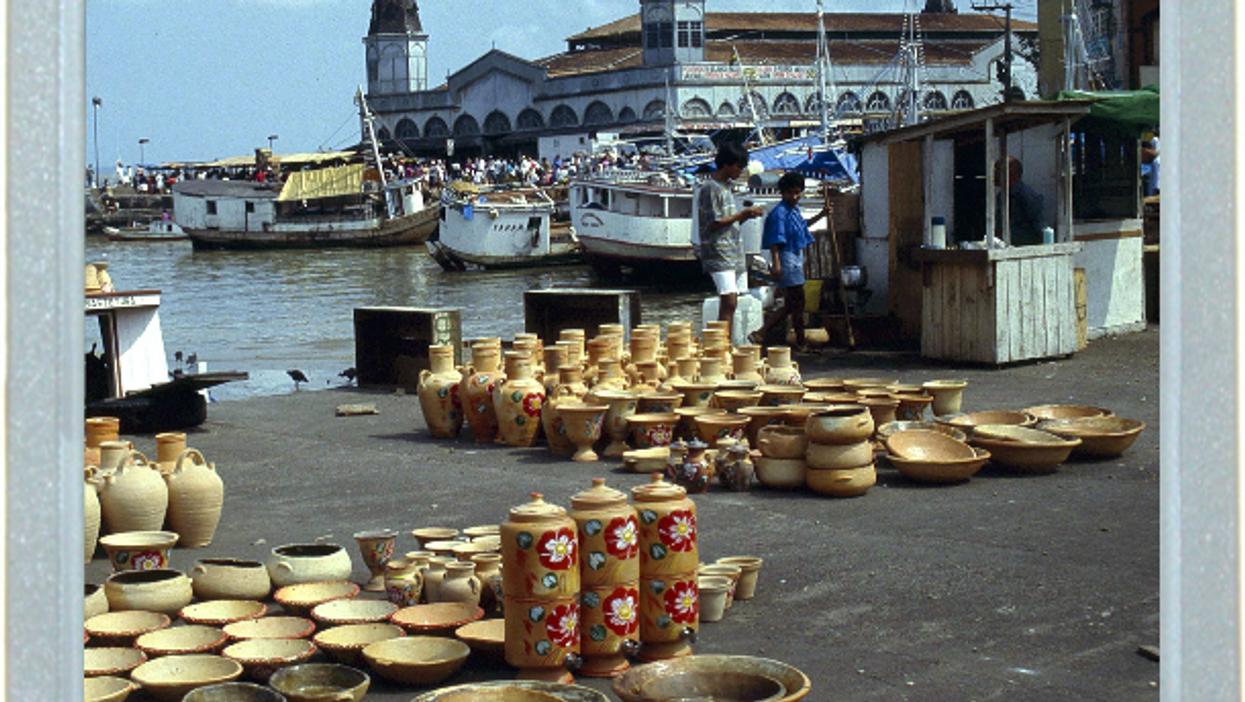 Something Fishy On The Brazilian Market