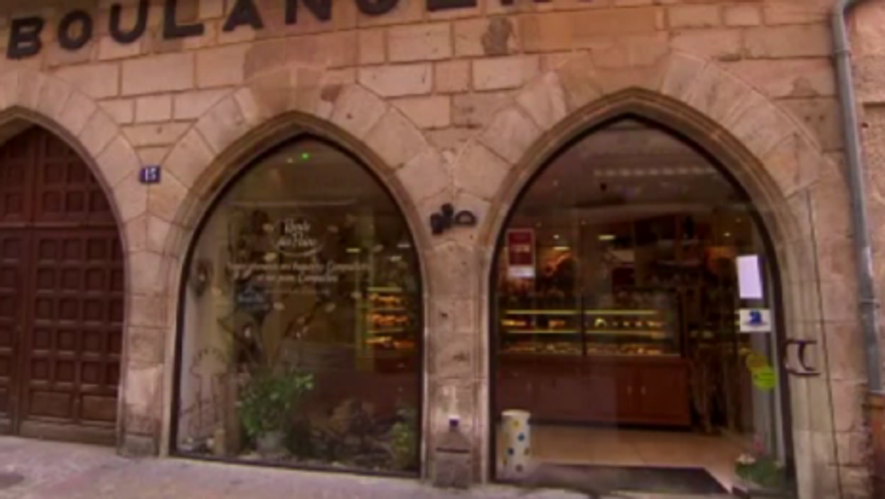 5 Gnawing Questions About That Cat Running Into A Glass Door On A French TV Show
