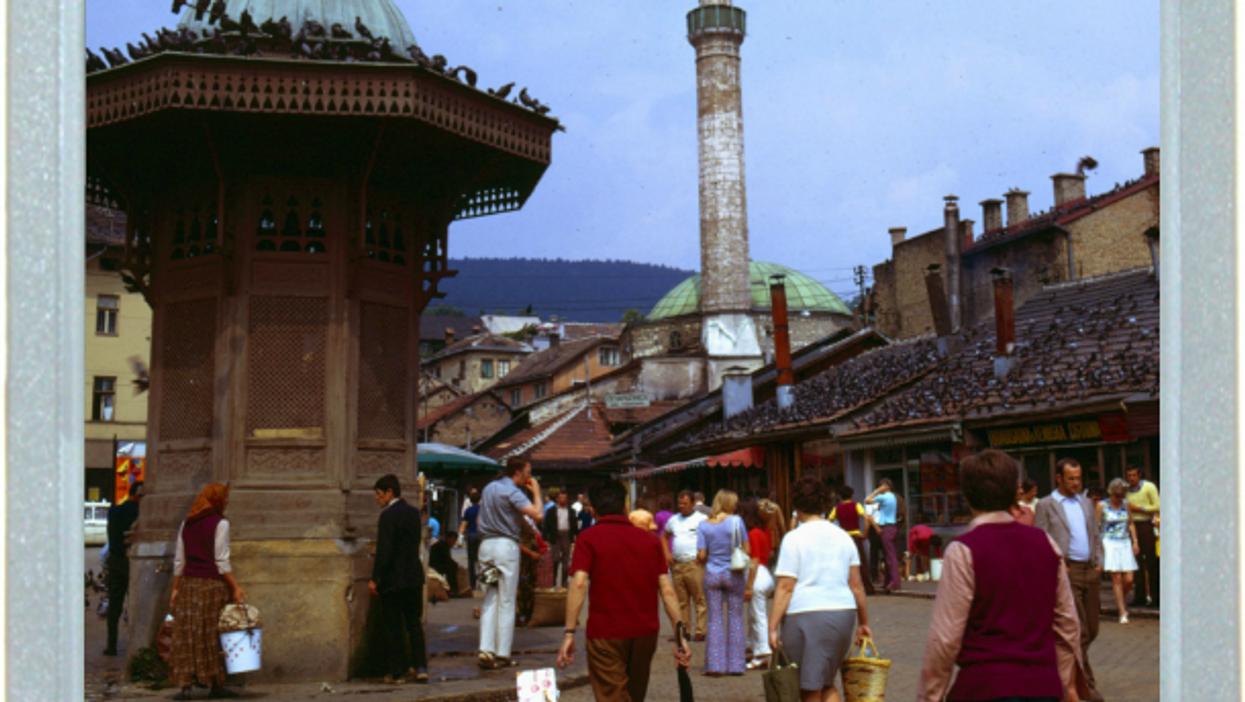 Sarajevo, Same Pigeons