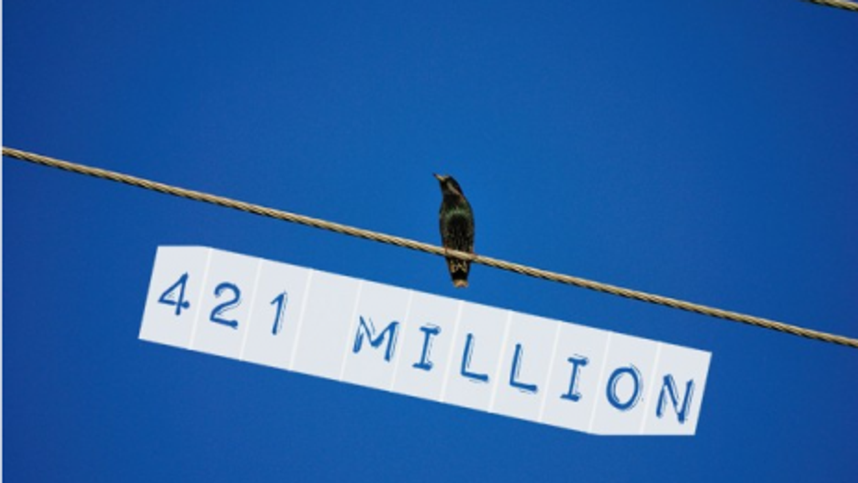 By The Numbers: Manet Record, Falling Birds, Botched Sterilization