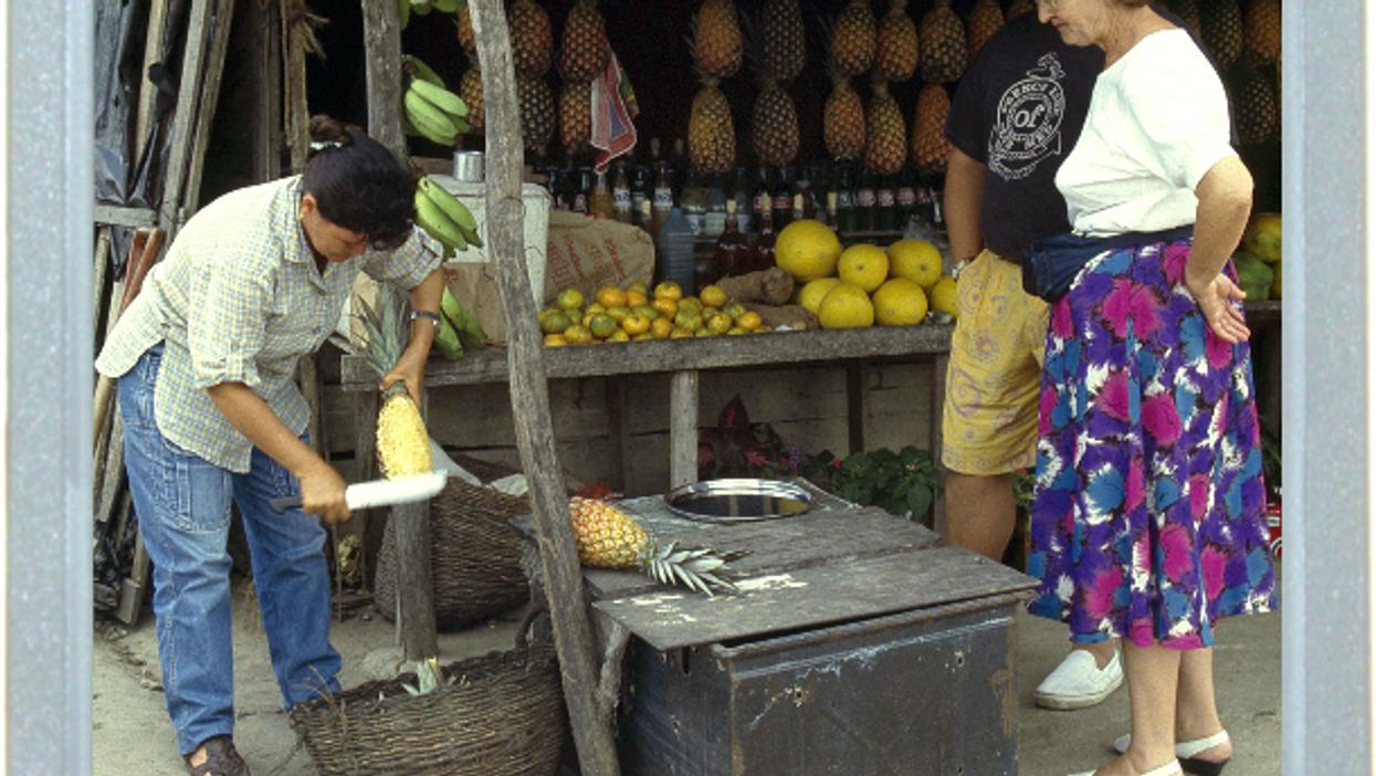 Ninja Fruit On Brazilian Roadside